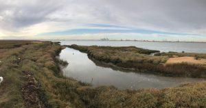 Yodare Island of the Week No. 2 – Deadman's Island
